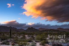 Sunkissed Cloud by Amy Sorvillo - This beautiful print of monsoon clouds over the Arizona Desert is perfect for home or office!