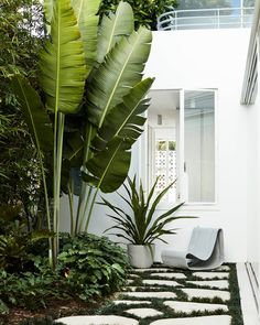 A Willy Guhl Loop chair and Kyoto planter from Swisspearl. - A Willy Guhl Loop chair and Kyoto planter from Swisspearl. Both are made from a special type of for - Tropical Garden Design, Tropical Landscaping, Modern Landscaping, Front Yard Landscaping, Landscaping Ideas, Tropical Gardens, Modern Planting, Mid Century Landscaping, Modern Backyard Design