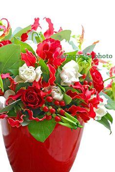 flower arrangement---花屋が作って撮った花の写真