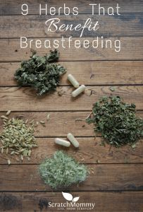 Come Over And Discover Our Favorite 9 Herbs That Benefit Breastfeeding (herbs, yes herbs to help support you during nursing)!- Scratch Mommy
