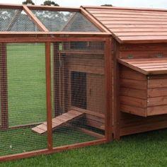 Chicken Coop 1009 - Chicken Warehouse