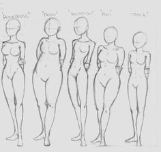 Female body types reference