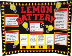 poster board presentation ideas | Tommie's Tools: Science Fair