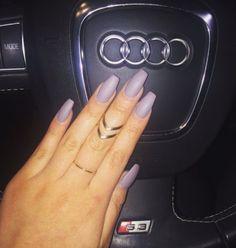 Lavender claws & Audi's