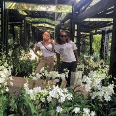 Orchid garden in Singapore #orchidgardensingapore  #orchids
