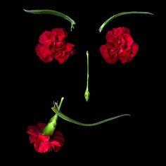 """A FLOWER GIFT FOR YOU, La CARMEN..."" by Magda indigo, via 500px."