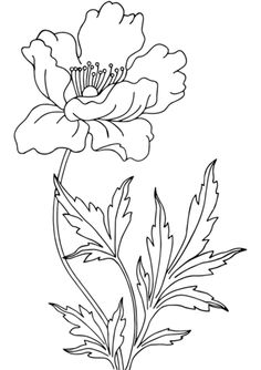 Poppy Coloring page Poppy Coloring Page, Colouring Pages, Coloring Books, Fabric Painting, Painting & Drawing, Embroidery Flowers Pattern, Hand Drawn Flowers, Art Drawings Sketches, Diy Arts And Crafts