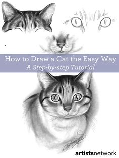 Youre only one click away from great tips on how to draw a cat