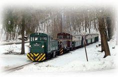 Lilla-napi vonatozás - Miskolc színei / Esemény, rendezvény Train, Vehicles, Car, Trains, Vehicle, Tools
