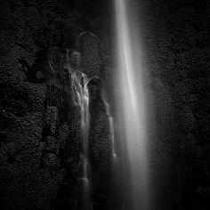 Liquid Garden, photography by Hengki Koentjoro