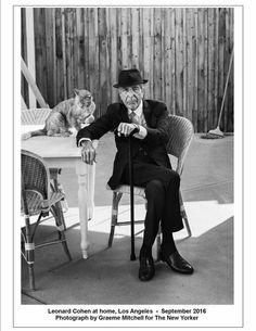 Leonard Cohen looking as dapper as always. R. I. P. dear soul. :'(