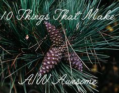 10 Things That Make A/W Awesome