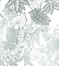 Hothouse Wallpaper by Independent Designers   Jane Clayton