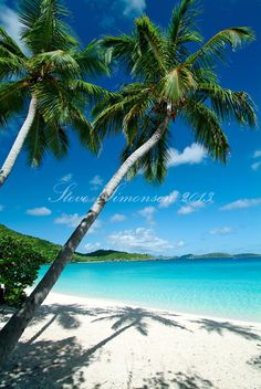 Trunk Bay, St John, US Virgin Islands National Park