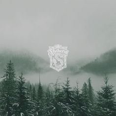 slytherin, fog, and forest image