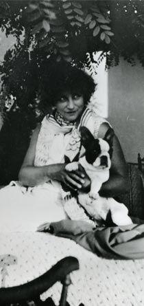 La Provence - La chienne Souci
