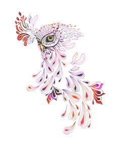 owl by Ola Liola