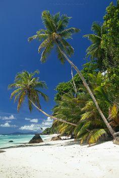 Baie Cipailles, Silhouette Island, Seychelles (photo by e t d j t pictures) - http://www.exoticseychelles.com/