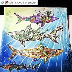 Instagram media desenhoscolorir - Tubarões lindos by @pintandoparasempre