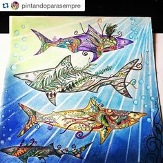 Instagram media desenhoscolorir - Tubarões lindos by @pintandoparasempre ・・・#lostocean #oceanoperdido #desenhoscolorir #johannabasford #jardimsecreto