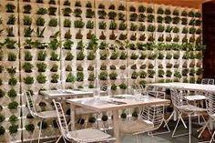 un restaurante ecológico y actual