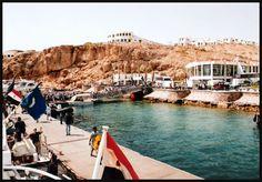 Minhas fotos do Mar Vermelho-Egito... Aguas azuis, golfinhos, corais e... camelos! - SkyscraperCity