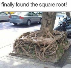 yes yes yes find that square root!!! Mwahahah. Sorry going crazy over math here. Yah not my favorite subject