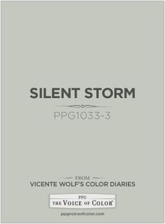 Silent Storm PPG1033-3 a Vicente Wolf Inspired Color as a part of the Vicente Wolf Collection by PPG Voice of Color See more about this paint color at: http://www.ppgvoiceofcolor.com/digital-color/paint-colors/silent-storm-ppg1033-3