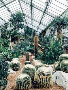 kew-garden
