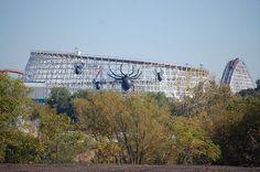 fright fest, American Eagle - Six Flags Great America