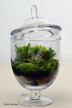 Lush green live moss terrarium in miniature by PinkSerissa on Etsy, $65.00
