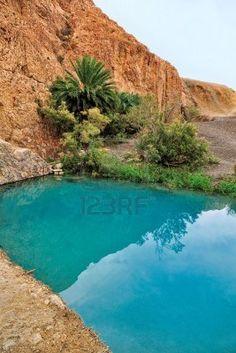 chebika desert oasis - Google Search