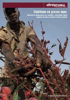 ---Luglio 2013--- Promuoviamo le coltivazioni biologiche. Un grande beneficio per la terra, per chi la lavora e per chi porta a tavola prodotti  genuini, coltivati senza l'utilizzo di sostanze chimiche.