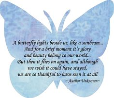 After the Miscarriage by Therese - July 2016 'I look back at a time while in hospital recovering from my miscarriage and after they had operated on me and wonder why? The powers that be thought it a good idea to show me the neo natal ward! Butterfly Poems, Butterfly Meaning, Butterfly Cards, Butterfly Kisses, The Butterfly Effect Quotes, Quotes About Butterflies, Butterfly Theory, Butterfly Symbolism, Butterfly Place
