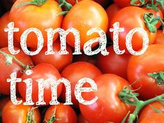 How to grow the best Tomato crop in Tasmania.