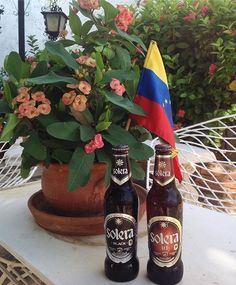 Con mucha Solera #InstabeerOfficial #Instabeer. #Beer #Cerveza #craftbeer #cervezaartesana #Bier #Biere #Birra #Cerveja