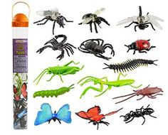 Safari Ltd Insects TOOB - Comes With 14 Toy Figurines - I... http://smile.amazon.com/dp/B000GYZ3Q6/ref=cm_sw_r_pi_dp_nQ2lxb055ZBYD