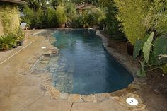This custom pool was built to cool down in the natural look of our surrounding environment. Here we used rocks in and out of the pool instead of concrete. Adding this nice water source was a natural complement to the surrounding landscape! Backyard Pool Landscaping, Backyard Pool Designs, Swimming Pool Designs, Backyard Ideas, Landscaping Ideas, Courtyard Pool, Ponds Backyard, Kleiner Pool Design, Pool Landscape Design