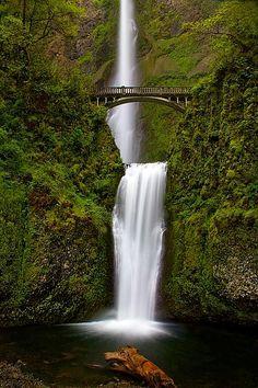 Multnomah Falls ~  Columbia River Gorge, Oregon :: © Patricia Davidson