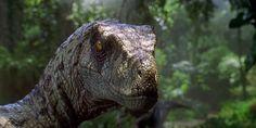 You need a go-to list of jams to get you going. Velociraptor Jurassic Park, Jurassic Park Raptor, Jurassic Park Film, Jurassic Park World, Jurassic World Wallpaper, Jurrassic Park, Spinosaurus, Prehistoric Animals, Mortal Kombat