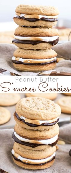 marshmallow fluff recipes Transform a campfire classic with these Peanut Butter S'mores Cookies! Soft & chewy sandwich cookies with a rich chocolate ganache and toasted marshmallow fluff. Smores Cookies, Smore Cookies Recipe, Cookies With Marshmallows, Camping Cookies, Marshmallow Cookies, Cookies Et Biscuits, Chip Cookies, Cookies Soft, Shortbread Cookies