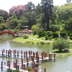 I love this picture from the Japanese Gardens in Buenos Aires, Argentina. The walkway over the water, the red bridge, and the beautiful blossoming tree.