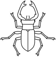 Die 54 Besten Bilder Von Hirschkäfer Beetle June Bug Und Beetle