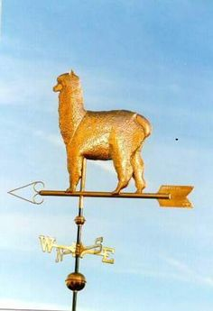 Huacaya Alpaca Weather Vane by West Coast Weather Vanes. This handcrafted Alpaca weathervane can be custom made using different designs and various metals including optional gold or palladium leafing. West Coast Weather, Lightning Rod, Weather Vanes, Urban Farming, Door Knockers, Windmills, Metal Crafts, Animal Design, Cows