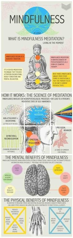 The Science & Benefits of Mindfulness Meditation Loved and pinned by www.downdogboutique.com