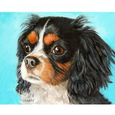 Cavalier King Charles Spaniel Original Acrylic Painting, 11x14 Stretched Canvas, Cav Art by Dottie Dracos, Farm Animals