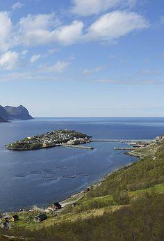 Husøy, #Senja in #Troms county, #Norway http://en.directrooms.com/hotels/subregion/2-39-460/