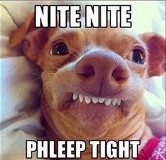 Funny Goodnight Memes - 50-Best
