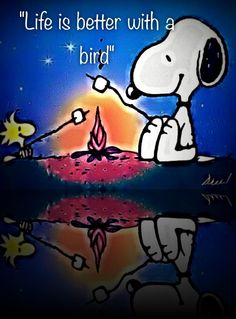 Life is ALWAYS better with a bird!