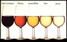 Vinos de Jere - Sherry Varieties fro Jerez in Spain
